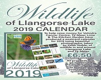 Calendars for Velindre Cancer Care