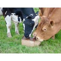 Ethical Farm Supplies - Mineral Buckets - Organic Cattle Biomins Block
