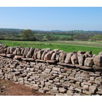 Drystone Walling (2 Day) Course